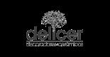 logotipo cliente estudio diseño discoh delicer